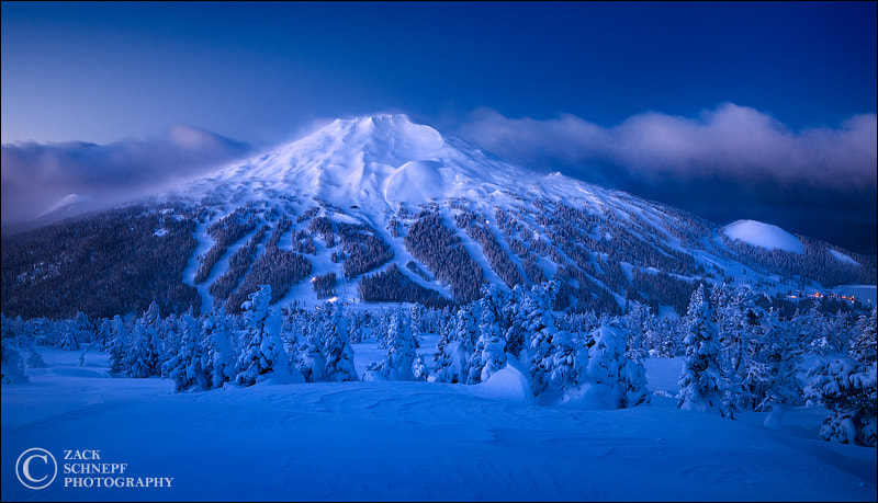 Photograph Moody Blue Bachelor by Zack Schnepf on 500px