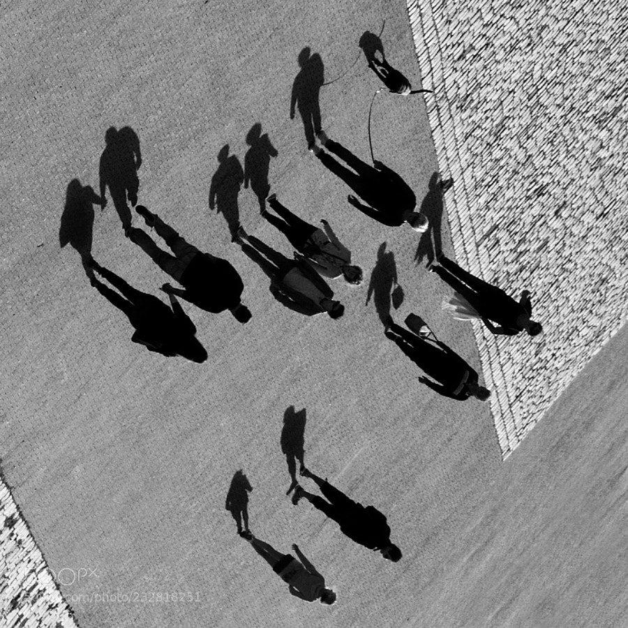 Standing Shadows  -  Debout les Ombres