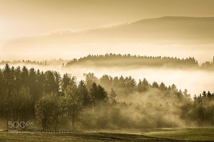 Deggenhausertal im Nebel