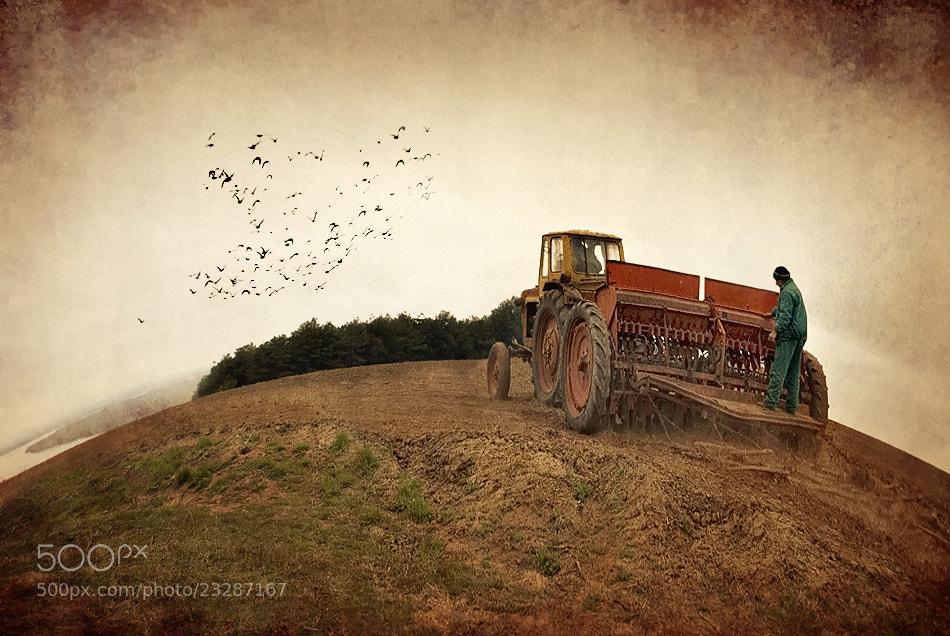 Photograph Planting time by Silvia Georgieva on 500px