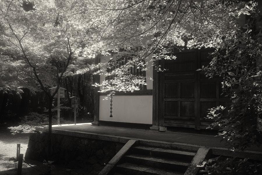 Osaka #63 by Hiro _R on 500px.com