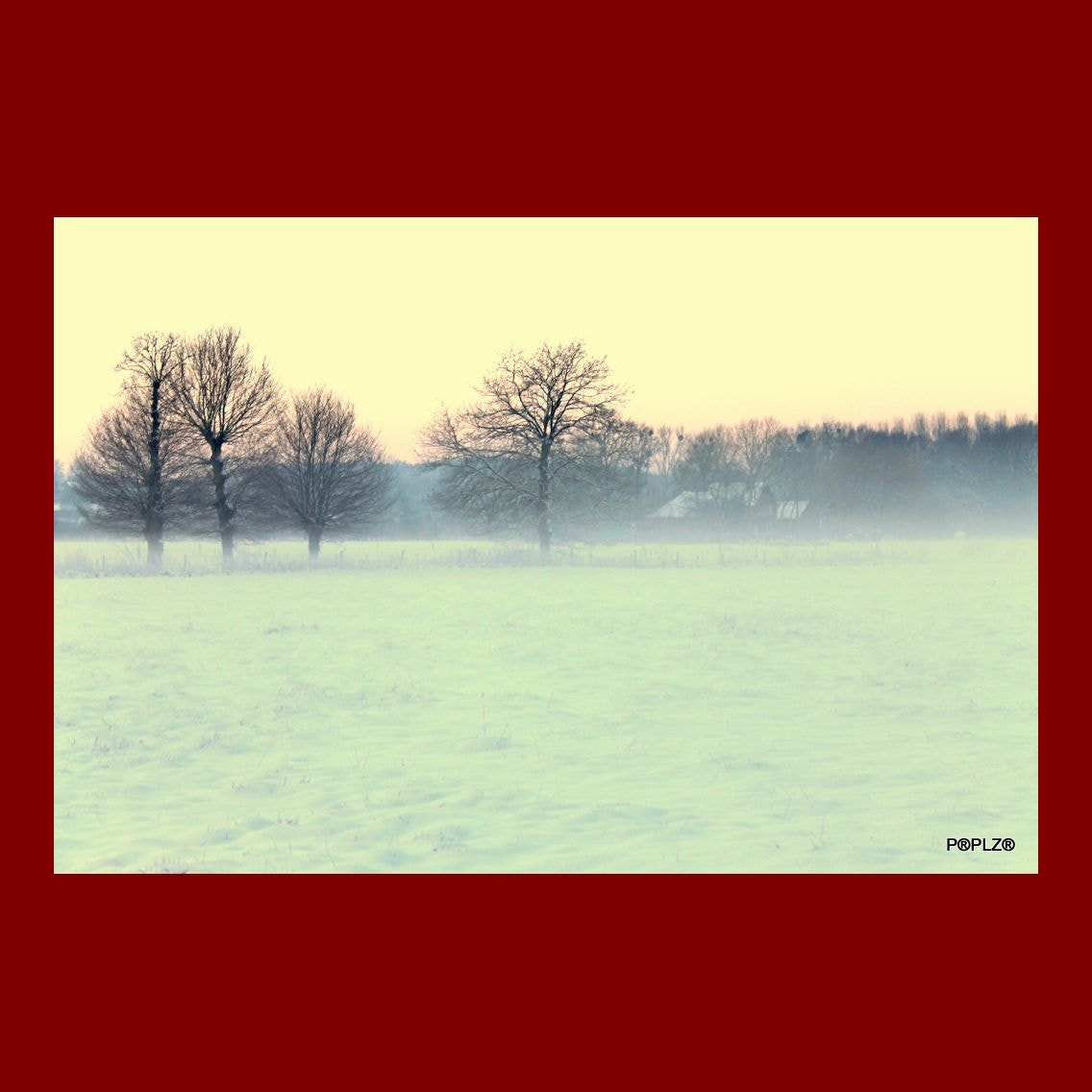 Photograph Snowy Morning in Flandres by Carl Lapiere on 500px