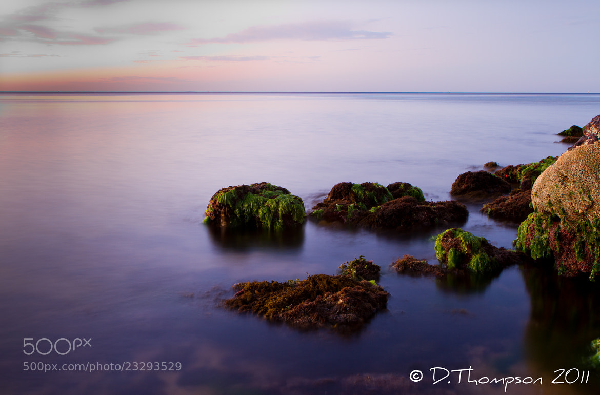 Photograph TranQuil by Green Orchard Photography on 500px
