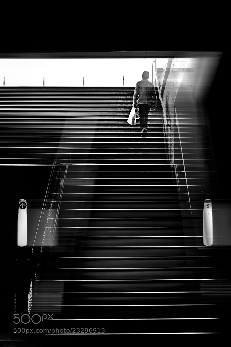 Photograph Up and Away by Paulo Abrantes on 500px