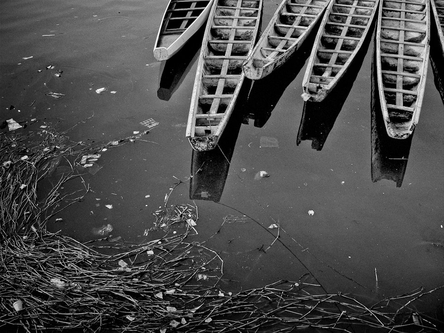 Photograph Row Boats by Junel Mujar on 500px