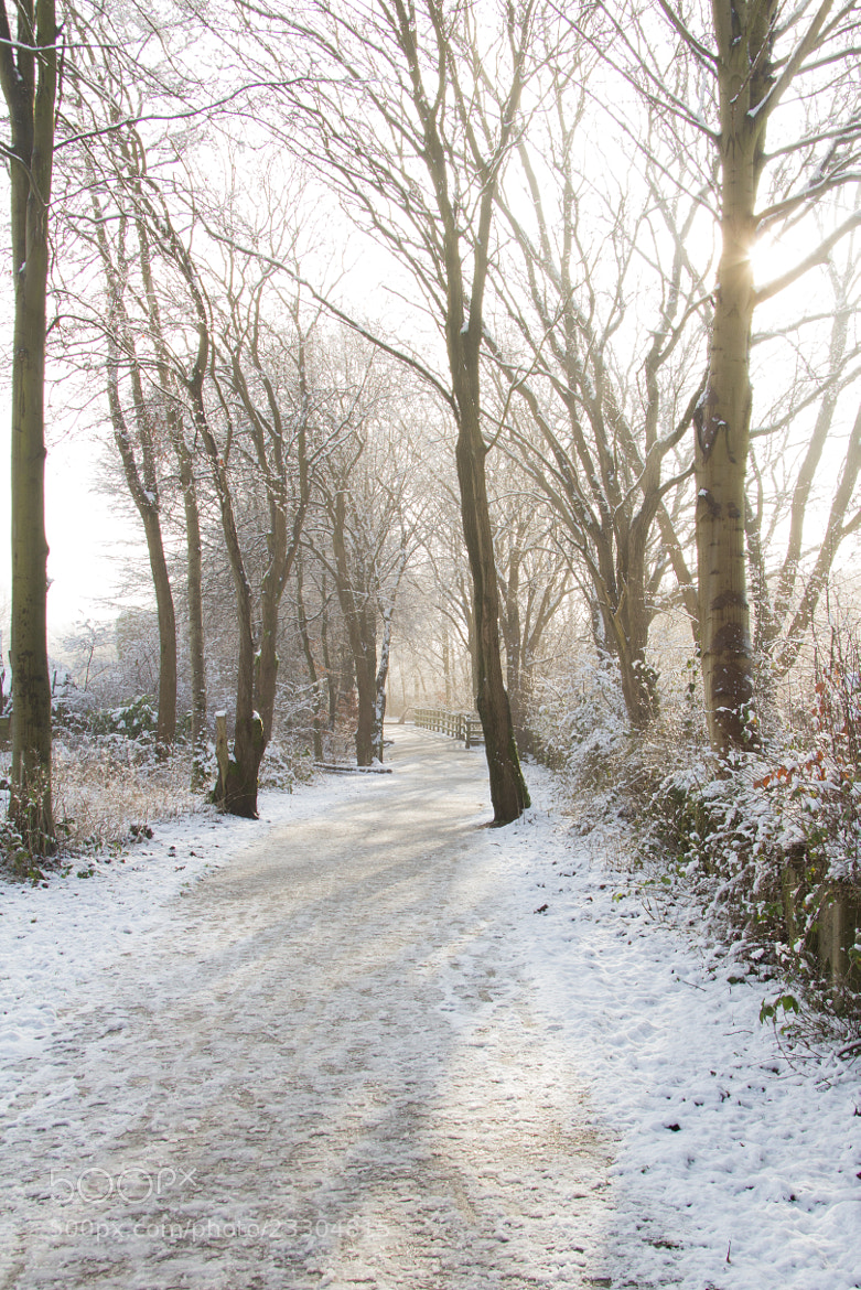 Photograph Snow scene on a footpath by Mark Stokes on 500px