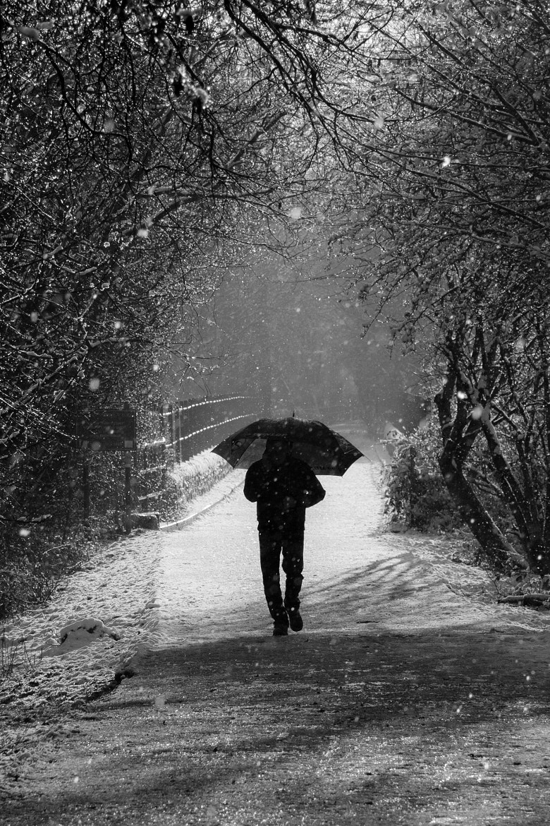Photograph Man walking with an Umbrella in the snow by Mark Stokes on 500px