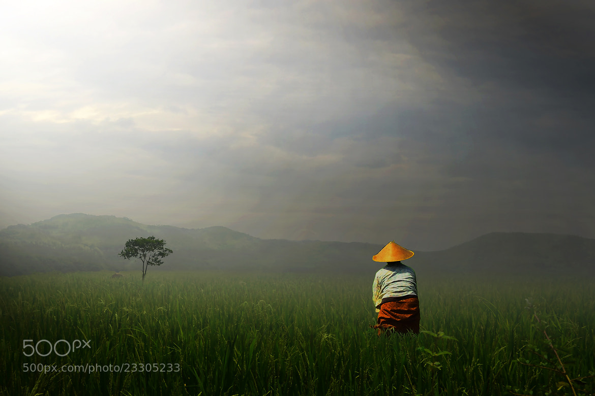Photograph Sunyi by D'cast Photowork on 500px