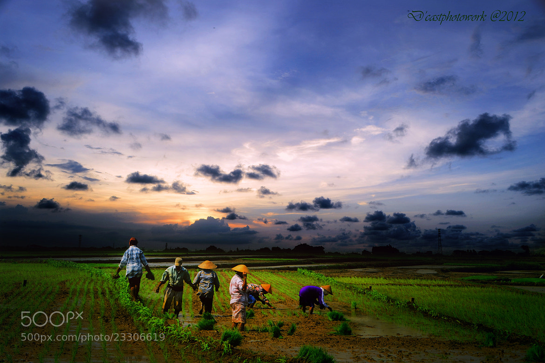 Photograph Tandur Mundur by D'cast Photowork on 500px