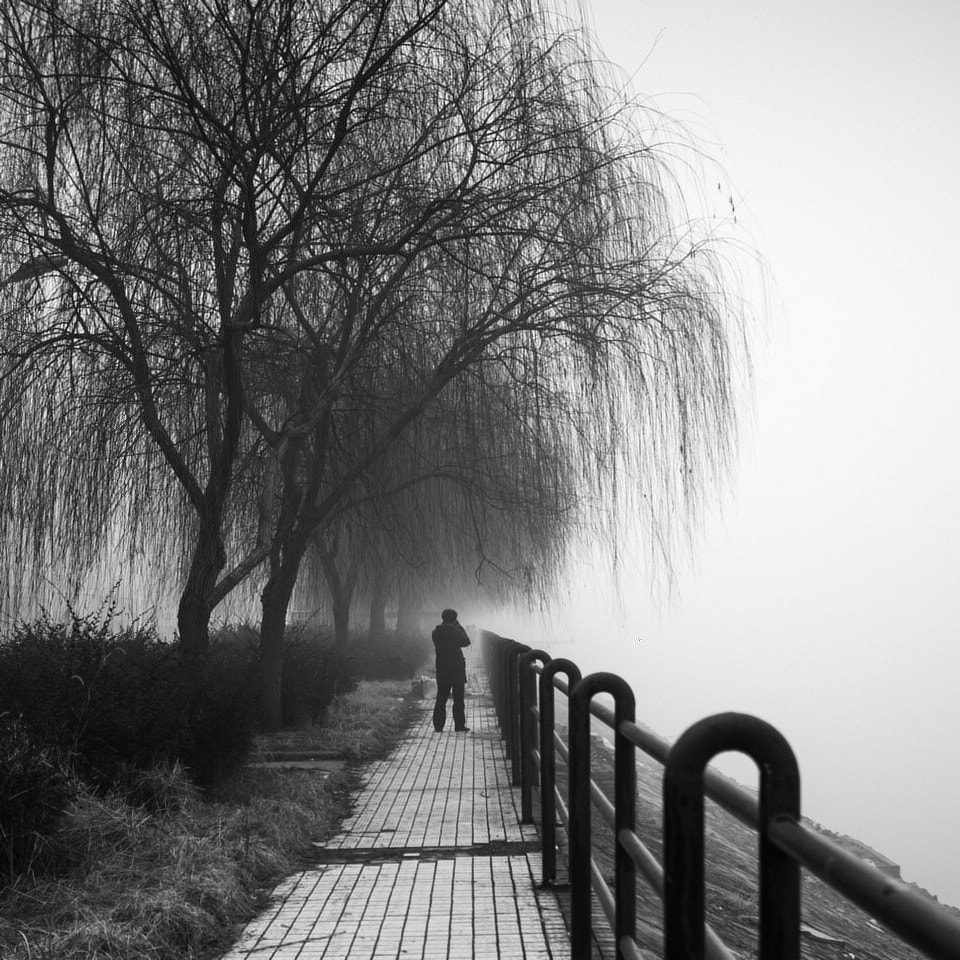 Photograph Untitled by weichuan liu on 500px