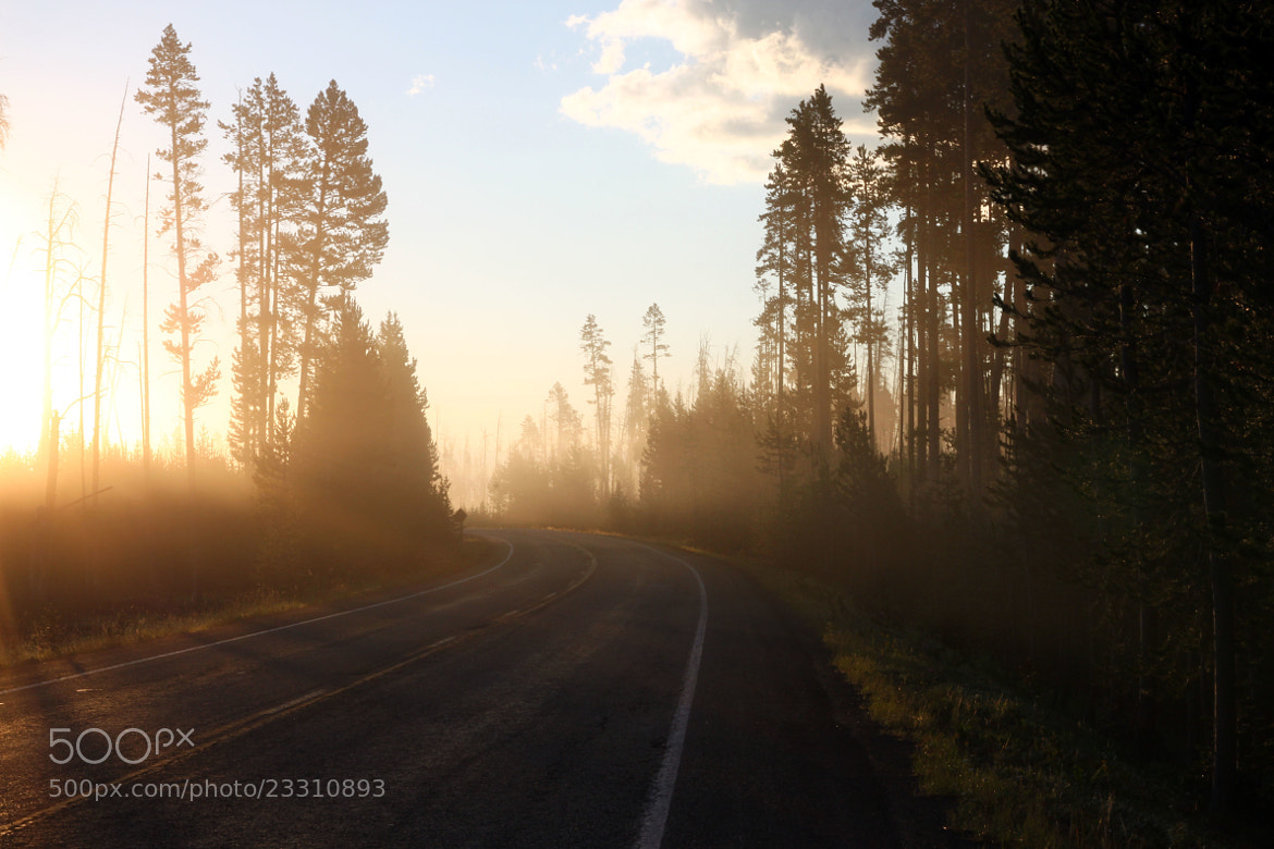 Photograph Morning in Yellowstone by Chi Yip on 500px