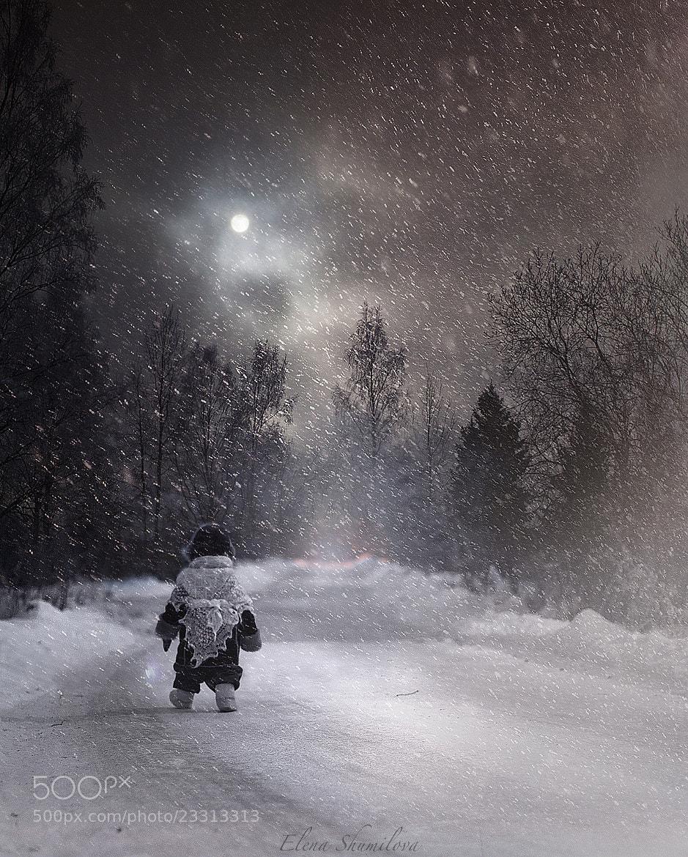 Photograph The snow way by Elena Shumilova on 500px