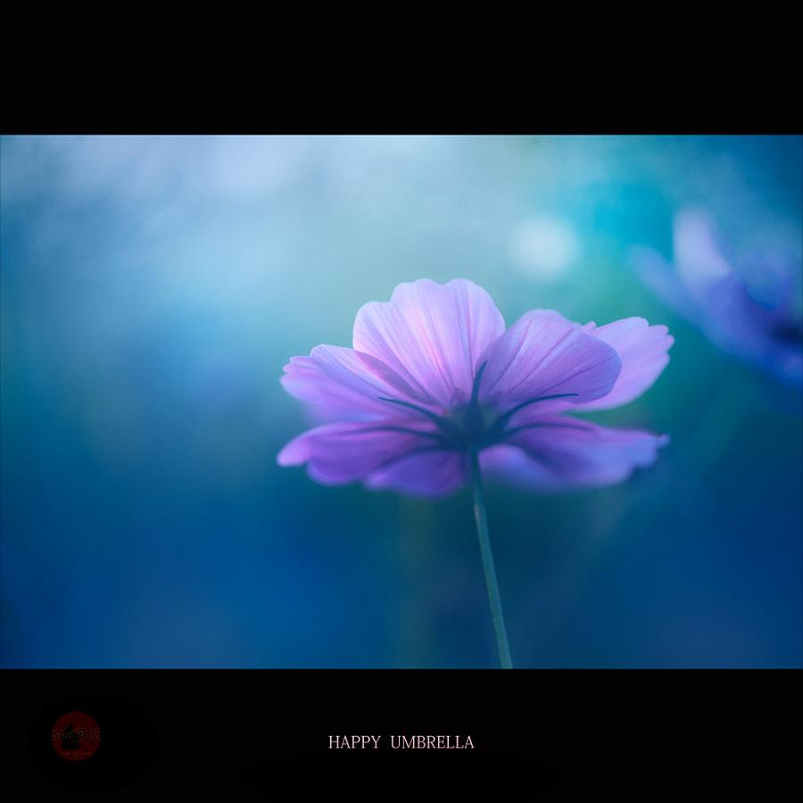 幸せな時 de Kiyoshi Iida sur500px.com