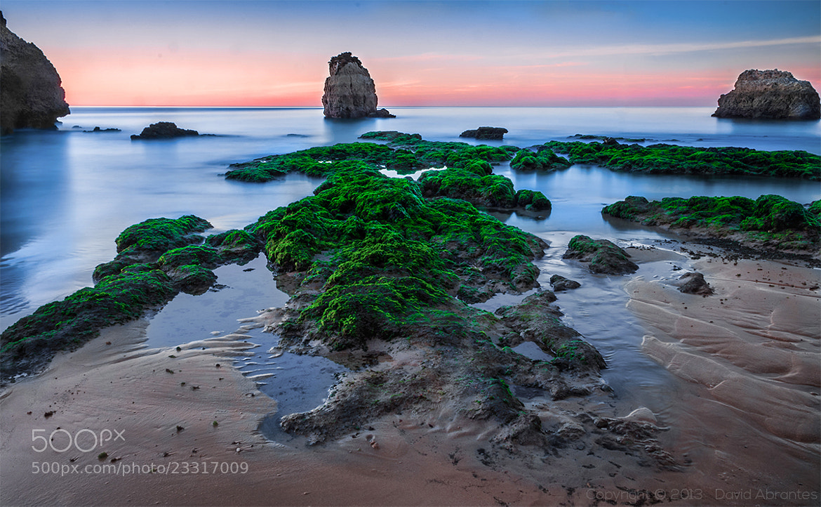 Photograph Another day at the beach by David Abrantes on 500px