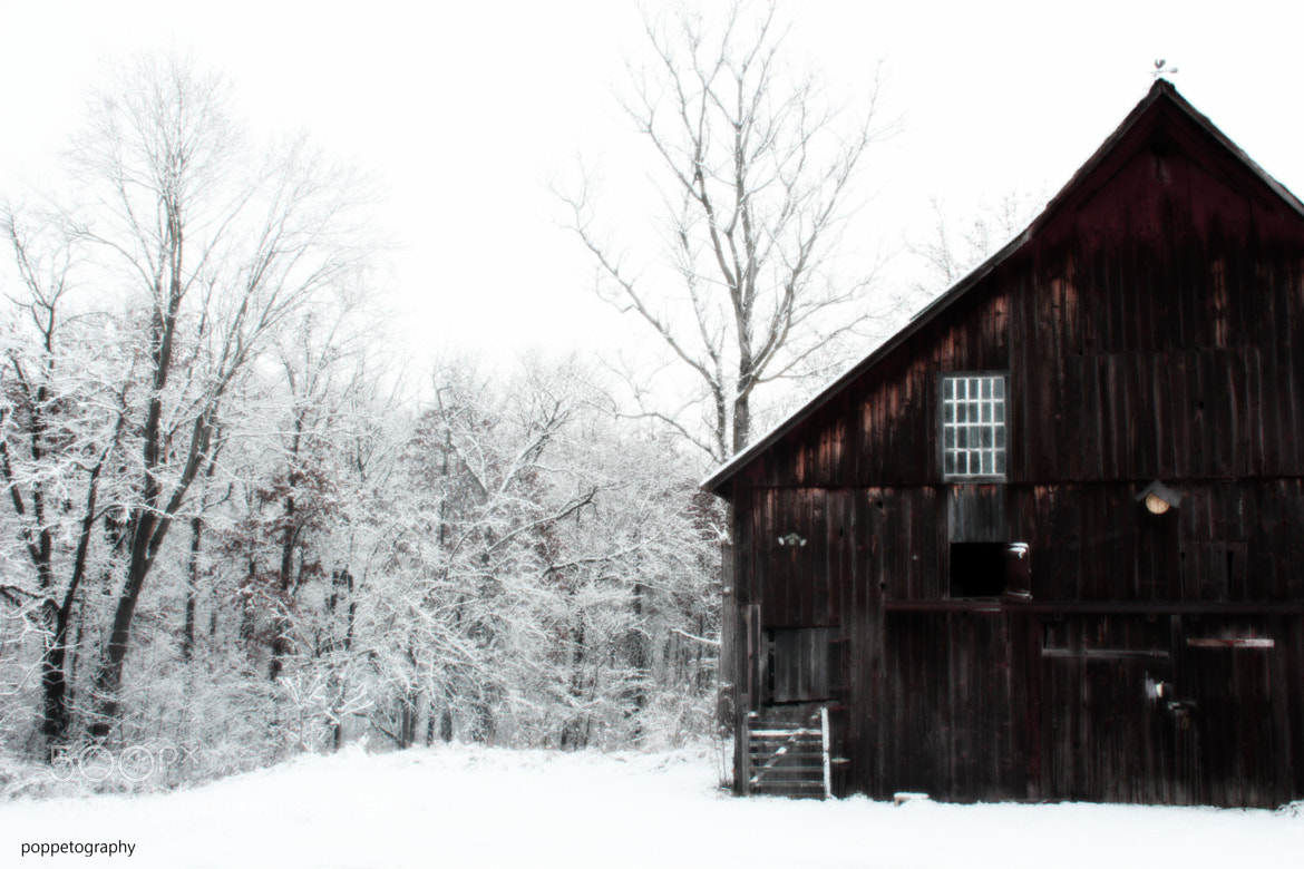 Photograph Country Winter by Poppet Maulding on 500px
