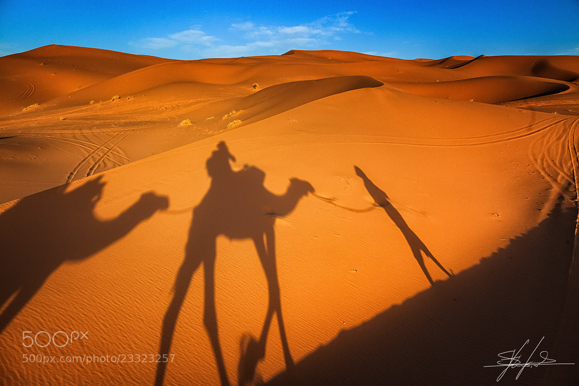 Photograph Sahara exploration by Stefano  Viola on 500px