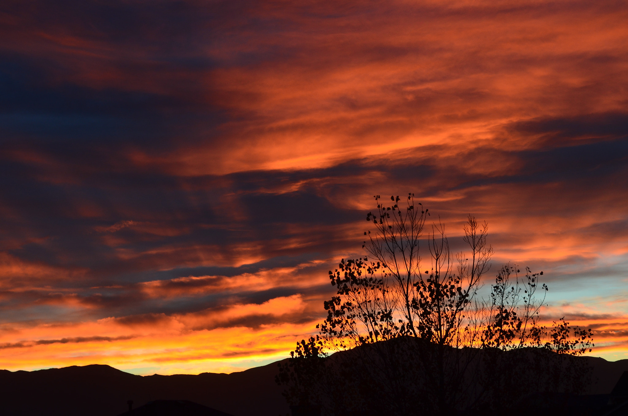 Photograph Fall Sunset by Jeff Heredia on 500px