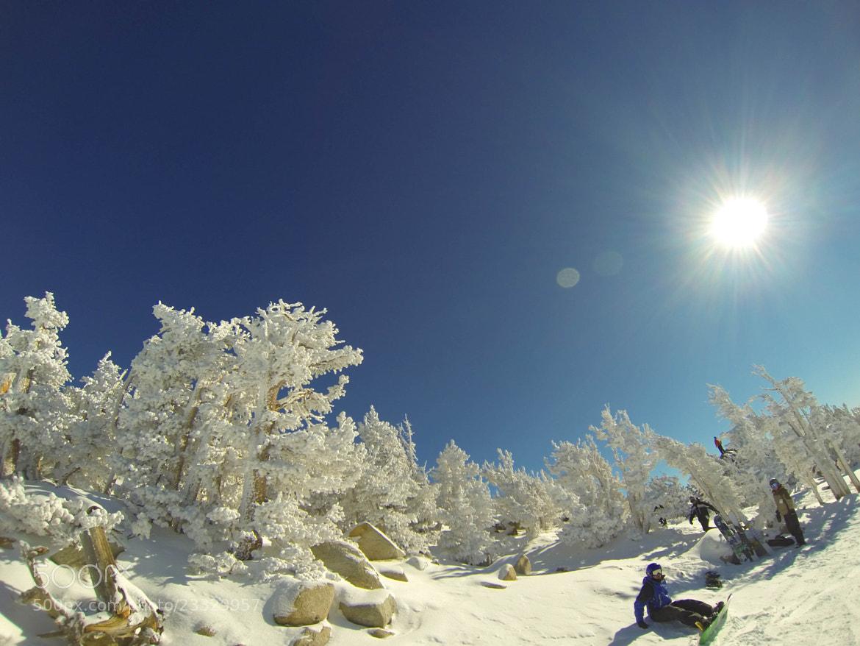 Photograph Wintery Wonderland. by Tori Lesikar on 500px