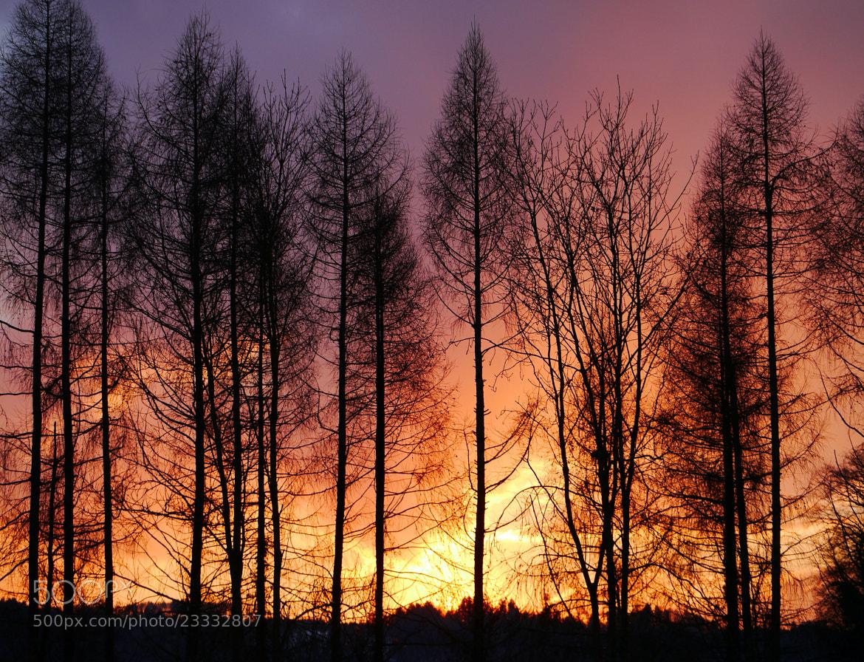 Photograph Sunset Fire by Manda Ch. Kamala on 500px