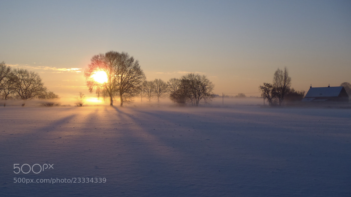 Photograph Early Morning Sun by eddie meynen on 500px