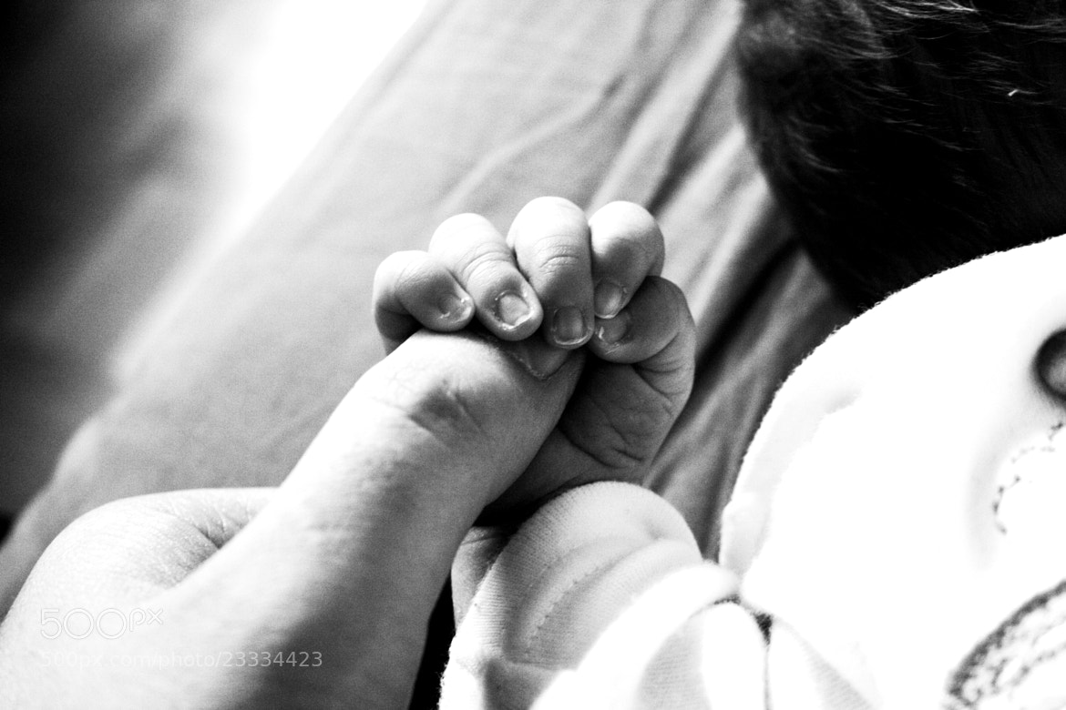 Photograph Hands by MicheleMoresco on 500px