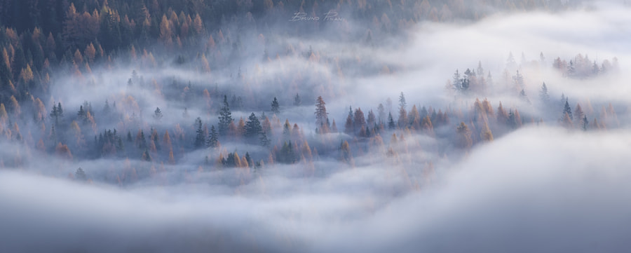 Autumn Mist by Bruno  Pisani on 500px.com