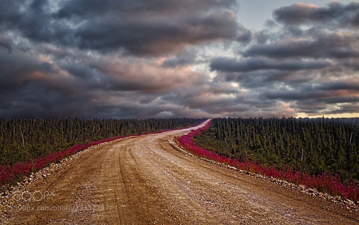Photograph Dempster Highway - Yukon 1982 by Paul  Murphy on 500px