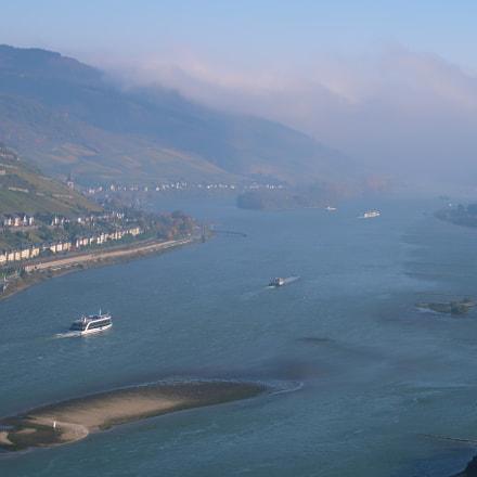 Misty Rhine in Autumn