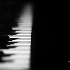 Piano by Adil Beqa (AdilBeqa)) on 500px.com