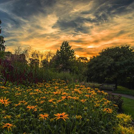 Coombe Park at Sundown, South London, UK