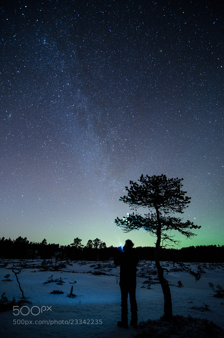 Photograph Tree, Me and Infinity by Kolbein Svensson on 500px