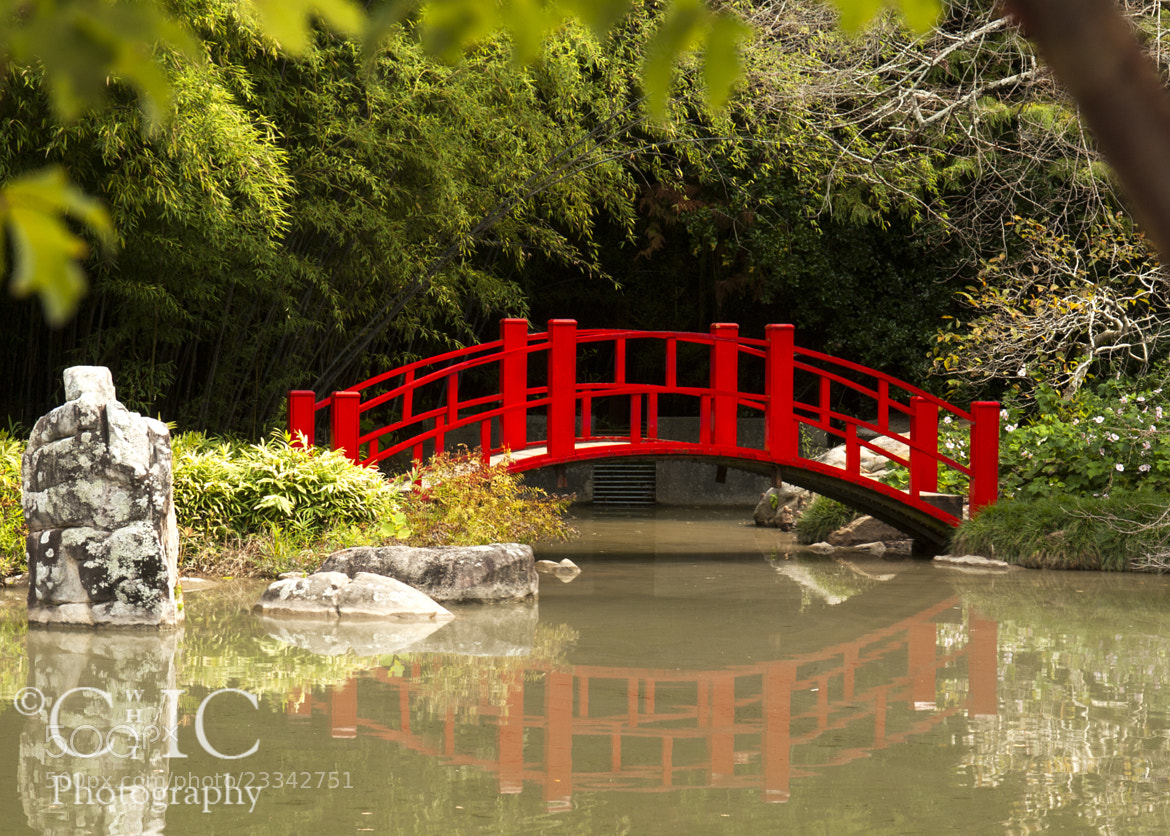 Photograph Red Bridge by Mark Fields on 500px