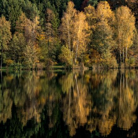 Herbst am Höllerer See