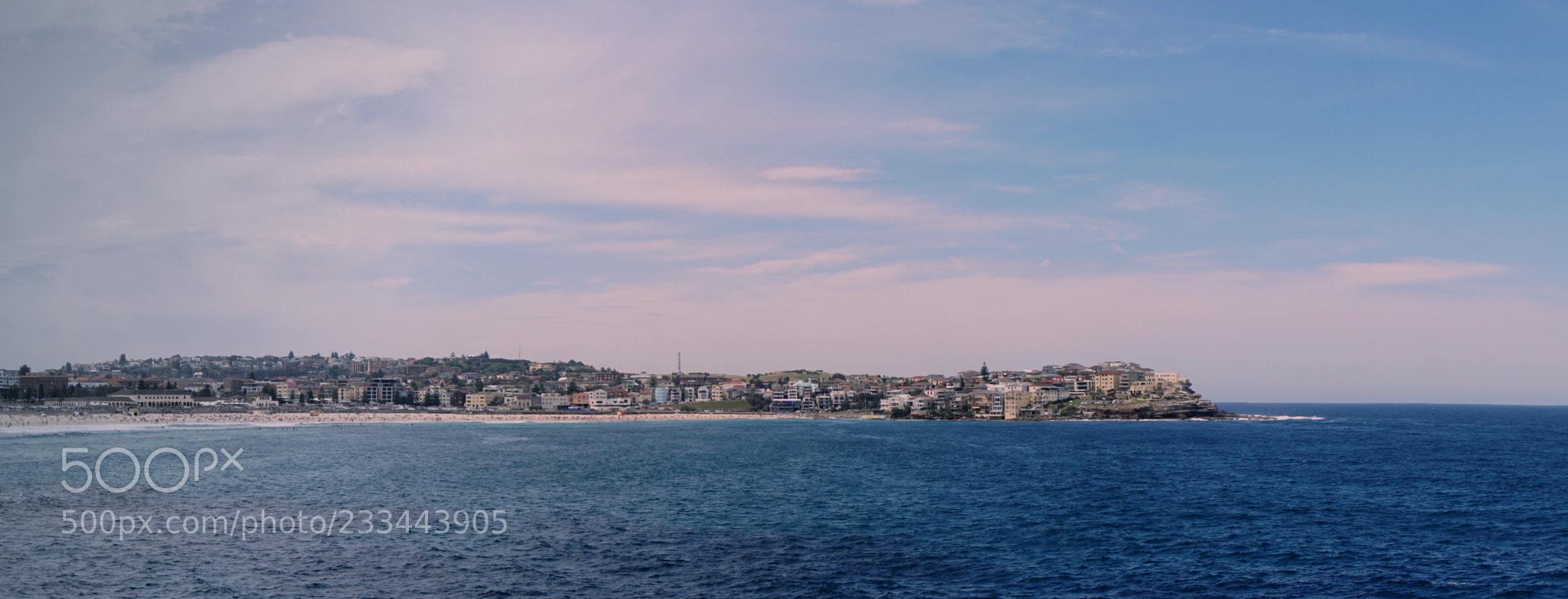 Bondi Beach Coastline