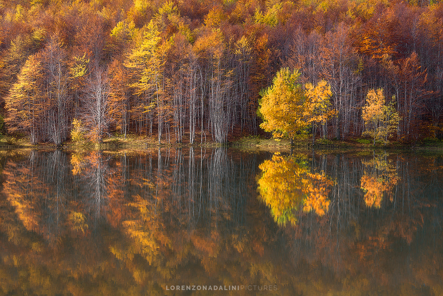 Embrace The Fall by Lorenzo Nadalini on 500px.com