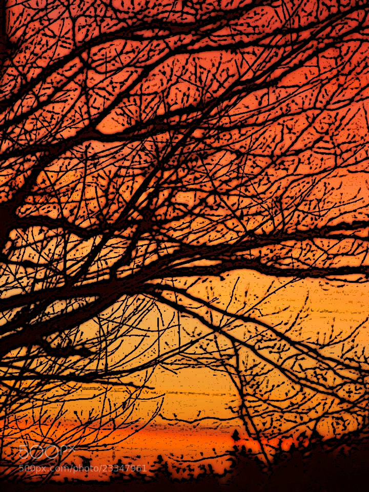 Photograph Sunrise by Julie Lord on 500px