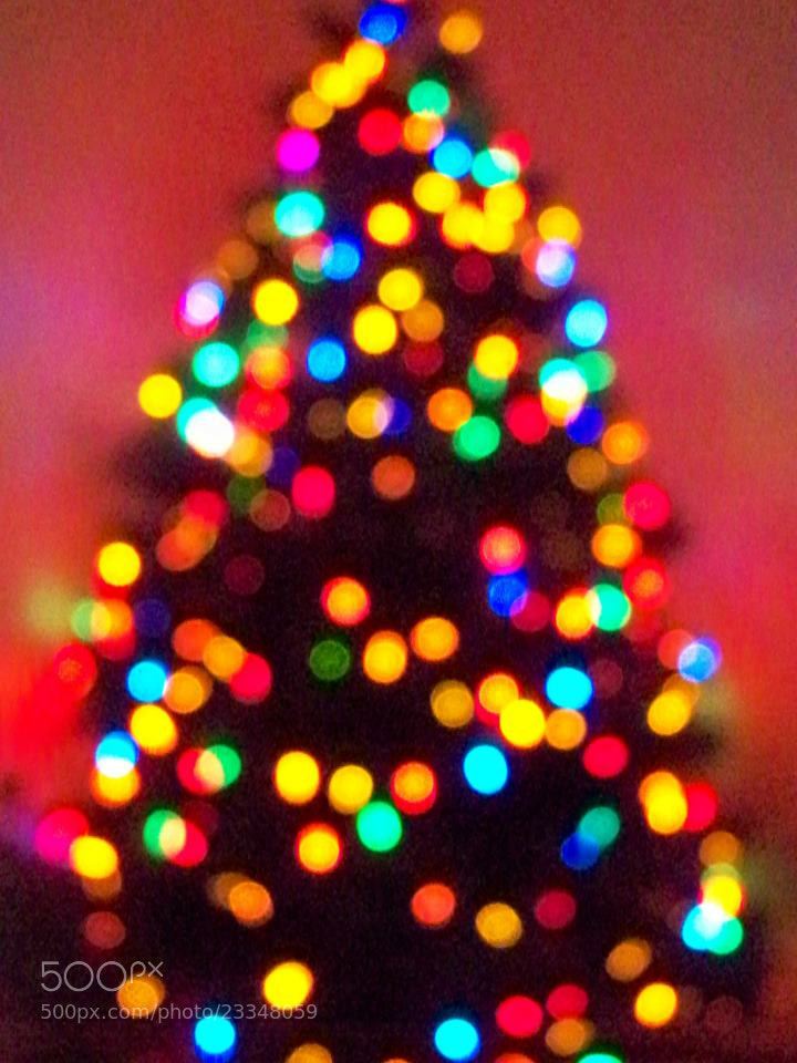 Photograph Bokeh Christmas Tree by Julie Lord on 500px