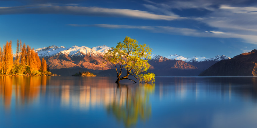 Golden Icon by Dylan Toh & Marianne Lim on 500px.com