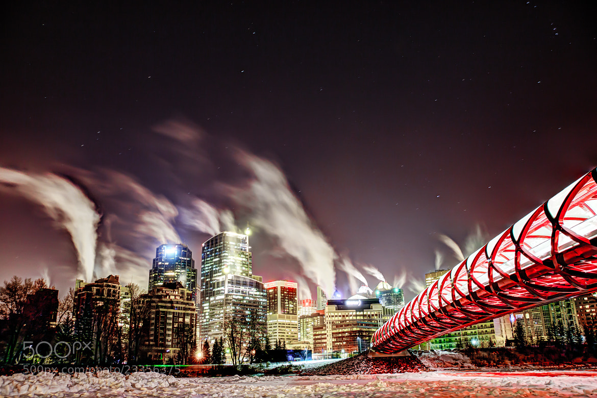 Photograph Cold and Starry Peace Bridge, Calgary by Neil Zeller on 500px