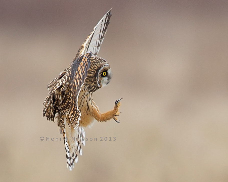 Photograph Brakes On, Gear Down by Henrik Nilsson on 500px