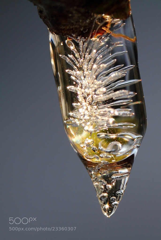 Photograph Cristal by Sylvie Houtmann on 500px