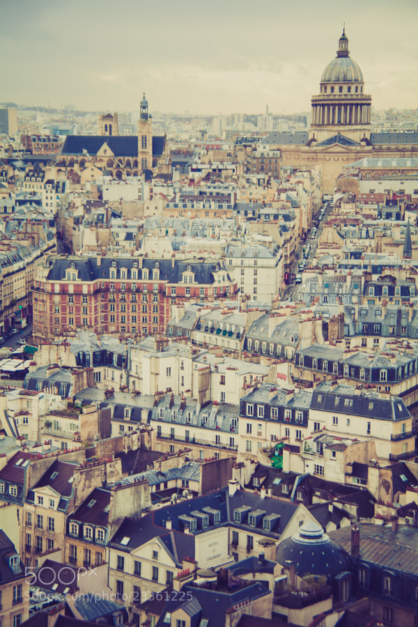 A simple edit of the Paris skyline, taken recently from on top the Notre Dame Cathedral. The edits I applied really enhance the city's historical roots.
