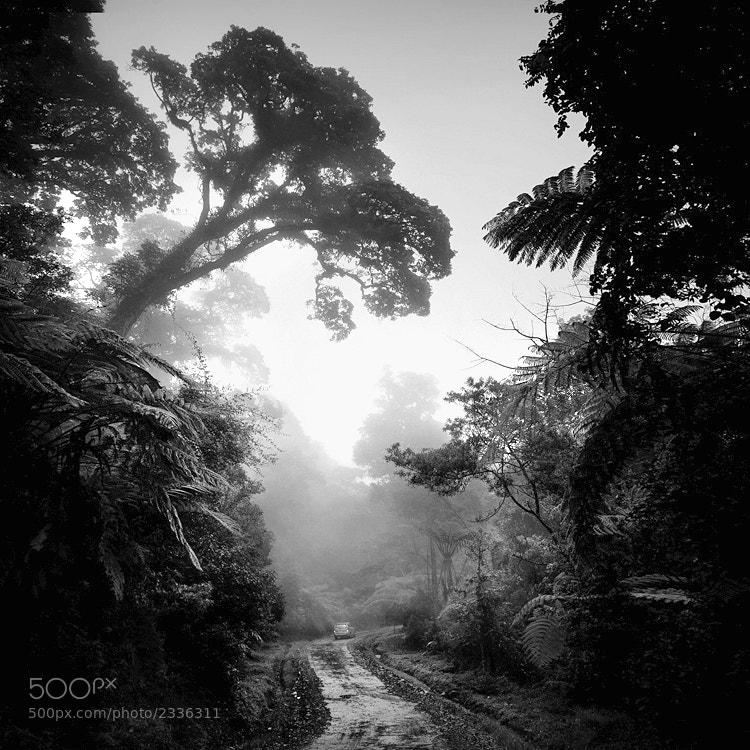 Photograph Jurassic Park by Hengki Koentjoro on 500px