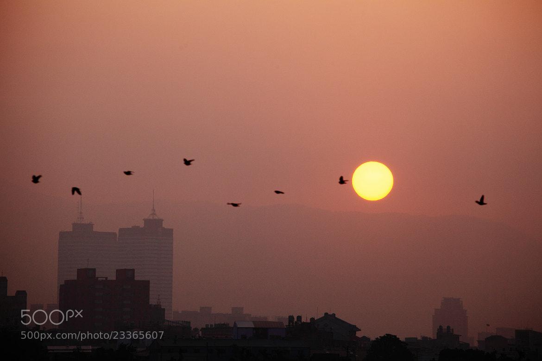 Photograph Misty Sunrise by Mike Hsu on 500px