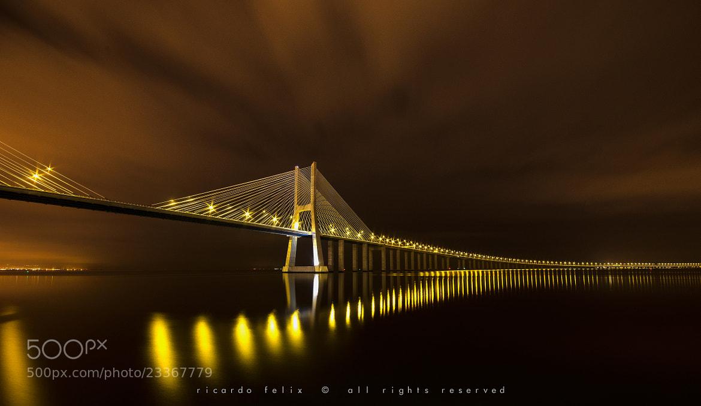 Photograph Ponte Vasco da Gama at Night #1 by Ricardo Bahuto Felix on 500px