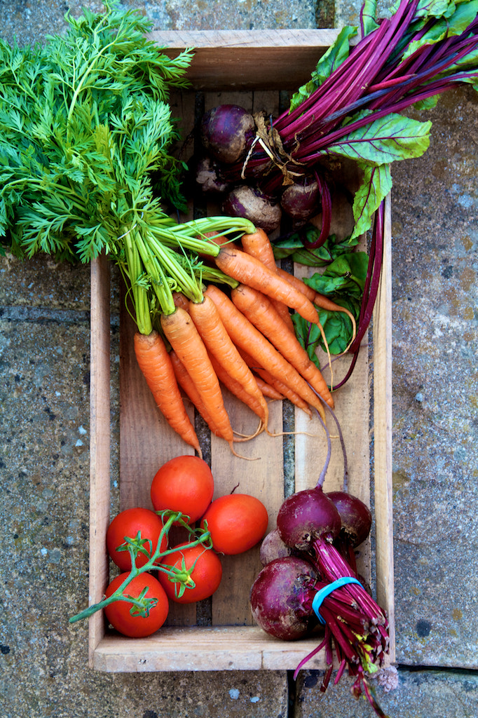 Photograph Fresh Winter Veg by Toby Kennedy on 500px