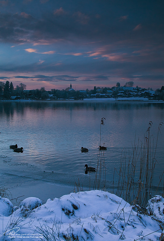 Photograph Winter at the lake by Florian Warnecke on 500px