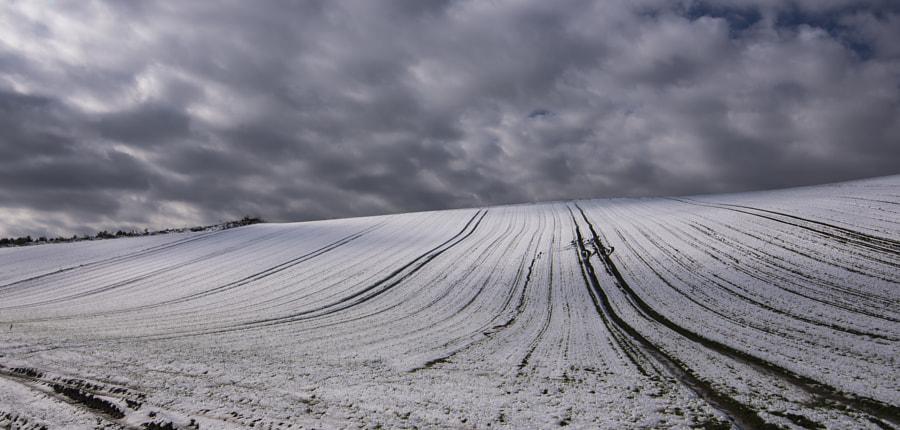 500px.comのKousuke Toyoseさんによる初冬の雪積もる丘