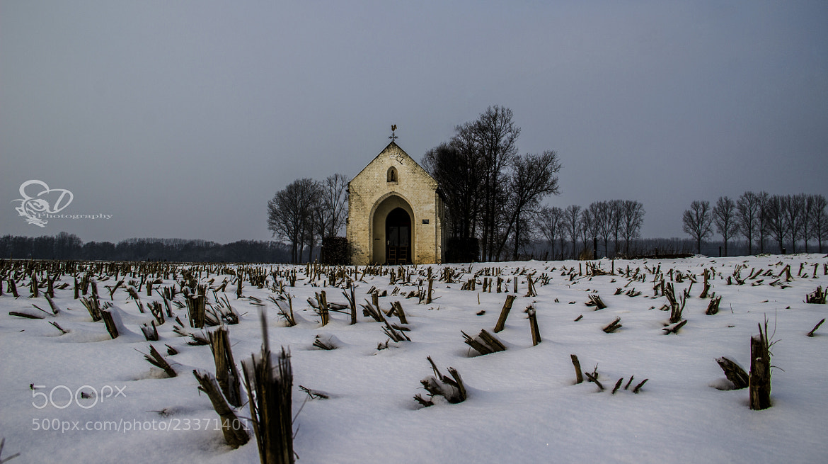 Photograph winterchapel by SD PHOTOGRAPHY  on 500px