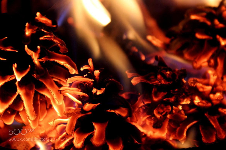 Photograph ateşin dansı... by hakan esmeray on 500px